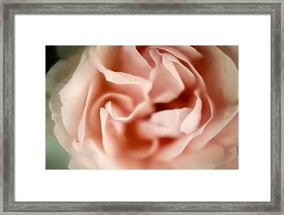 Ballerina Pink Framed Print by Claudia Smaletz