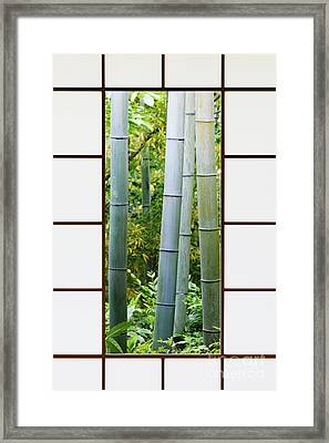 Bamboo Forest Through A Rice Paper Window Framed Print by Jeremy Woodhouse