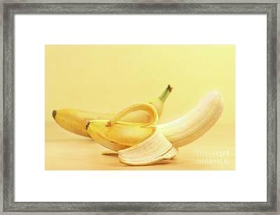 Bananas Framed Print by Sandra Cunningham