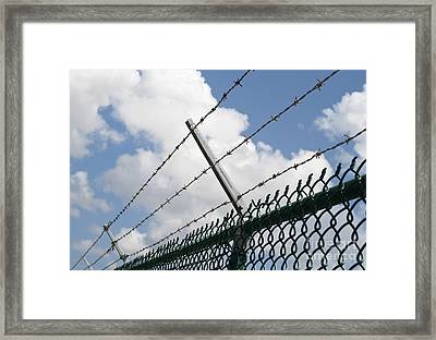 Barbed Wire Framed Print by Blink Images
