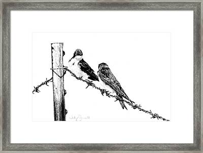 Barbed Wire Courtship Framed Print by Judy Garrett