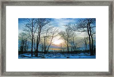 Bare Of Winter Framed Print by Debra     Vatalaro