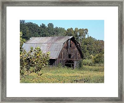 Barn Beauty Framed Print by Regina McLeroy