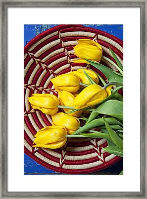 Basket Full Of Tulips Framed Print by Garry Gay