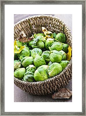 Basket Of Brussels Sprouts Framed Print by Elena Elisseeva