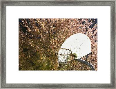 Basketball Hoop Framed Print by Andersen Ross