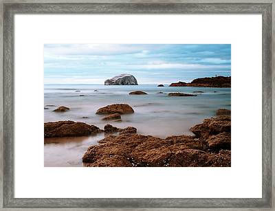 Bass Rock Framed Print by Amanda Finan