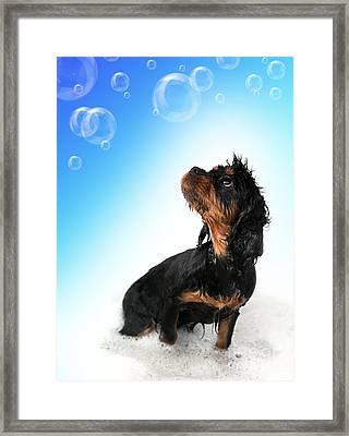 Bathtime Fun Framed Print by Jane Rix