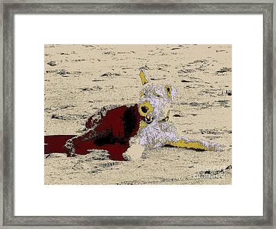 Beach Dog 7 Framed Print by Nina Kaye