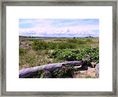 Beach Roadscape Framed Print by Janice Drew