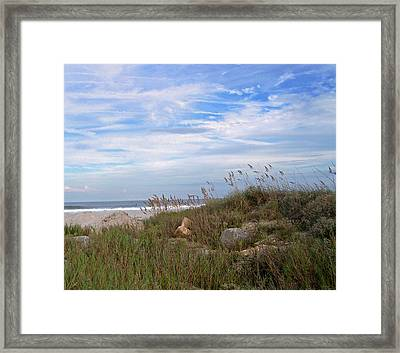 Beach Rocks Framed Print by Patricia Taylor