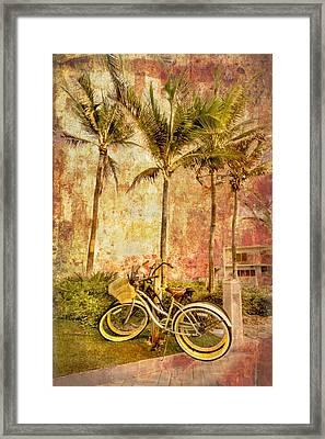 Beachy Keen Framed Print by Debra and Dave Vanderlaan