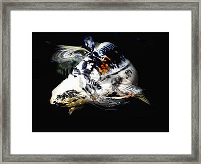 Beautiful Baby Framed Print by Don Mann