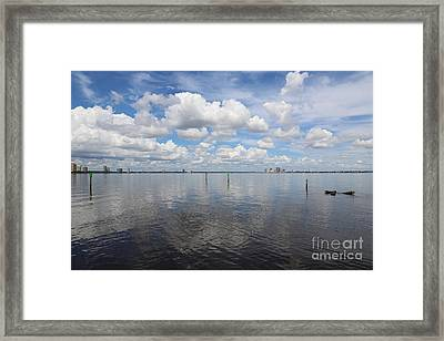 Beautiful Day In Tampa Framed Print by Carol Groenen