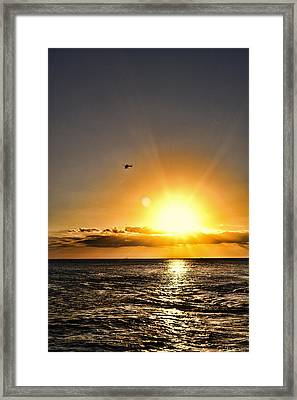 Beautiful Flight Framed Print by Sheri Bartoszek