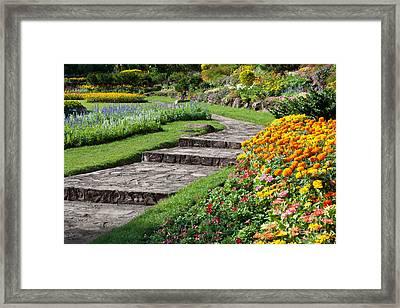 Beautiful Flowers In Park Framed Print by Atiketta Sangasaeng
