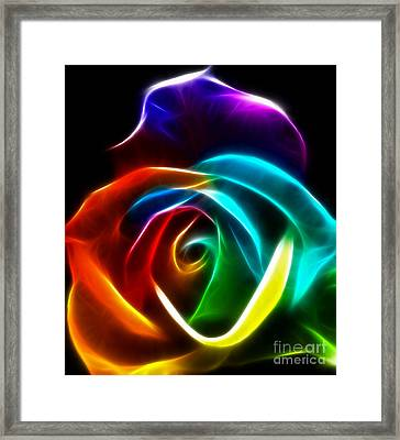 Beautiful Rose Of Colors No3 Framed Print by Pamela Johnson