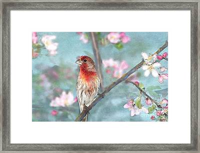 Beautiful Spring Framed Print by Betty LaRue