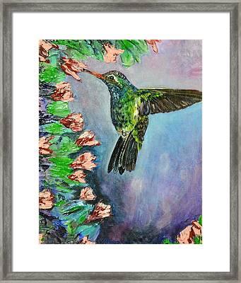 Beauty In Flight Framed Print by Melissa Torres