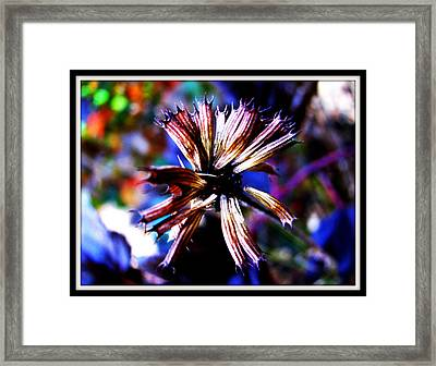 Beauty In Leftovers Framed Print by Janet Backhaus