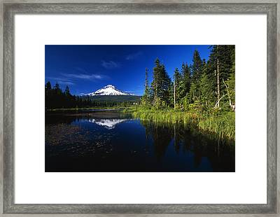 Beaver Dam In Pond, Reflection Of Mount Framed Print by Natural Selection Craig Tuttle