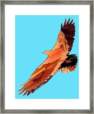 Becomming An Eagle Framed Print by Mike Holder