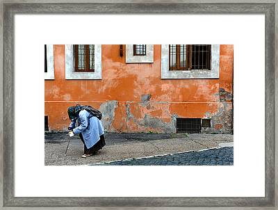 Begging Framed Print by Tammy McKinley
