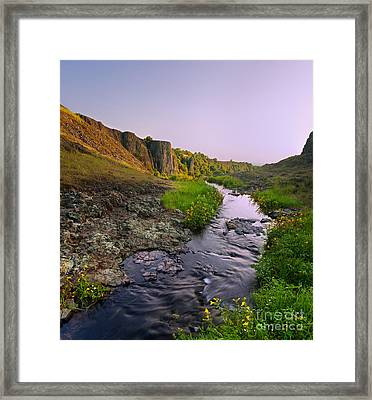 Behind The Mask Framed Print by Matt Tilghman