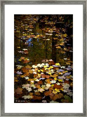 Behind The Scene Framed Print by Ed Smith
