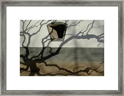 Beijing, Ditan Park Framed Print by Anton Hazewinkel