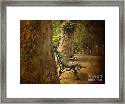 Bench In A Park Framed Print by Bernard Jaubert