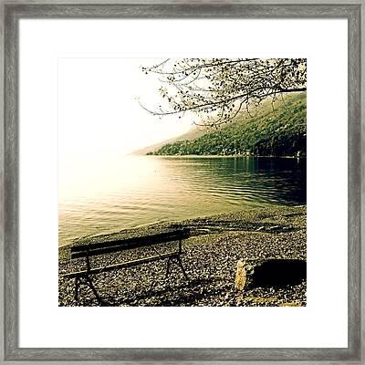 Bench In Autumn Framed Print by Joana Kruse