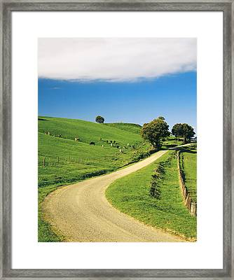 Bend In The Road Near Ferndale, West Gippsland, Victoria, Australia Framed Print by Peter Walton Photography