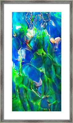 Beneath The Surface Framed Print by Terril Heilman