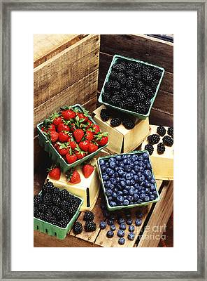 Berries Framed Print by Photo Researchers