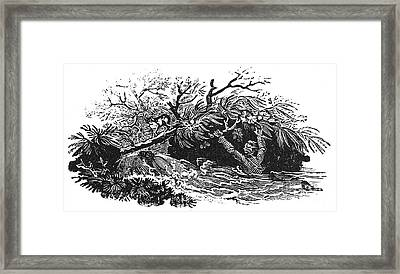Bewick: Man Drowning Framed Print by Granger