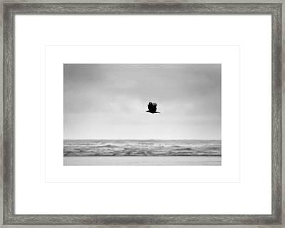 Beyond Framed Print by Ronnie Abraham