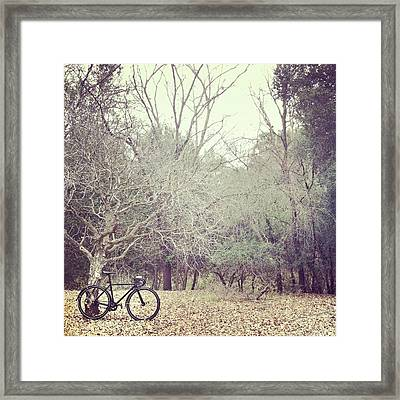 Bicycle Awaits At Entrance To Forest Framed Print by Joey Celis