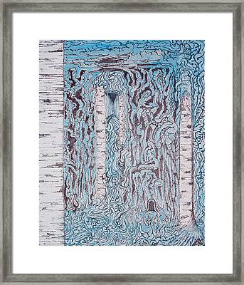 Birch N Blue Framed Print by Ben Christianson