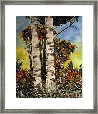 Birches For My Friend Framed Print by AmaS Art