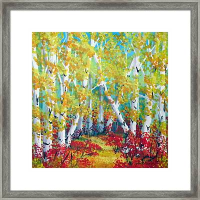 Birches In Autumn Framed Print by Sharon Marcella Marston