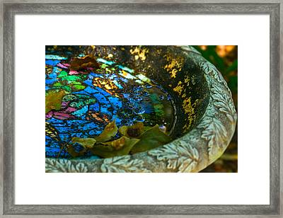 Bird Bath Mosiac Framed Print by Terry Finegan