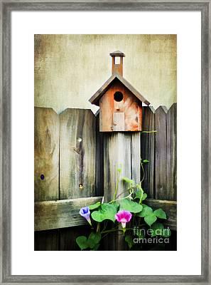 Bird Haven Framed Print by Darren Fisher