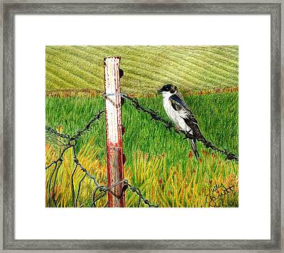 Bird On A Wire Framed Print by Judy Garrett