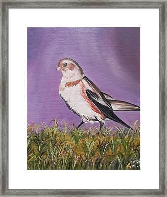 Bird Framed Print by Usha Rai