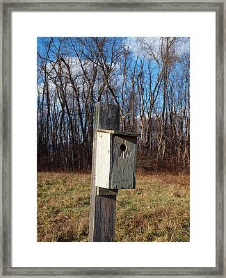 Birdhouse On A Pole Framed Print by Robert Margetts