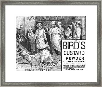 Birds Custard Powder Framed Print by Granger