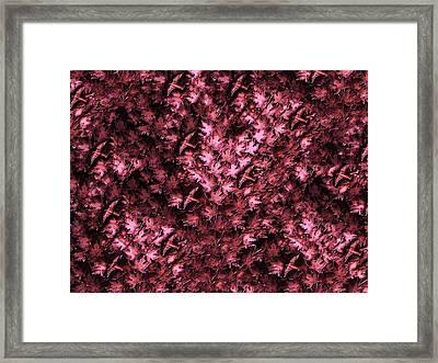 Birds In Redviolet Framed Print by David Dehner