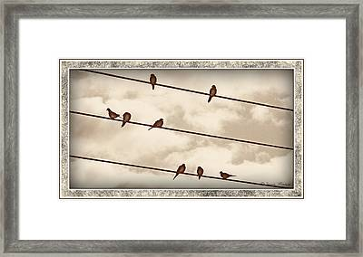 Birds On Wires Framed Print by Susan Kinney
