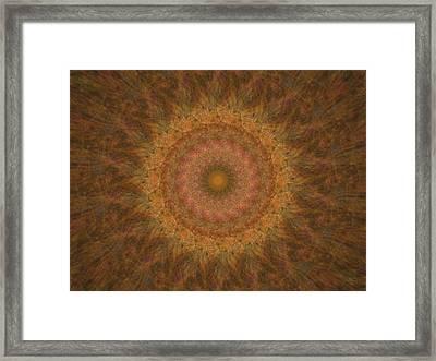 Birthing Mandala 18 Framed Print by Rhonda Barrett